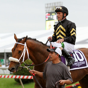 Skyring (English Channel) and jockey Gary Stevens win the Dixie Stakes (Gr II) at Pimlico Racecourse 5/18/13. Trainer: D Wayne Lukas. Owner: Calumet Farm