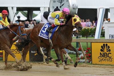 Lion D N A (Lion Heart) and jockey Joel Rosario win the Skipat Stakes at Pimlico Racecourse 5/16/14. Trainer: Rudy Rodriguez. Owner: Michael Dubb & Bethlehem Stables & Gary Aisquith