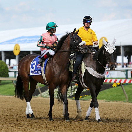 Somali Lemonade (Lemon Drop Kid) and jockey Luiz Saez win the Gallorette Hdcp (Gr III) at Pimlico Racecourse 5/17/14. Trainer: Michael Matz. Owner: Caroline Forgason