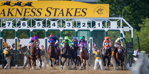 Bayern with Rosie Napravnik up had a tough start in the Preakness Stakes on 5.17.2014.