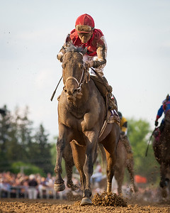 Ride On Curlin (Curlin), Joel Rosario up, runs second in the Preakness Stakes.