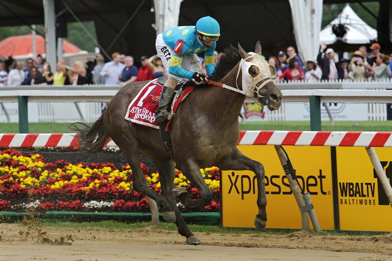 Governmentshutdown (Exchange Rate) and jockey Jose Betancourt win the Rollicking Stakes at Pimlico Racecourse 5/16/14. Trainer: John Robb. Owner: Tim O'Donohue Racing LLC