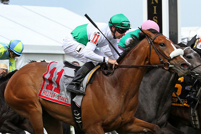 Gone Away (Leroidesanimaux) and jockey Florent Geroux win the Hilltop Stakes at Pimlico Racecourse 5/20/16. Trainer: Michael Matz. Owner: Augustin Stable