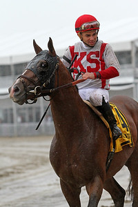 Takeover Target (Harlan's Holiday) and jockey Joel Rosario win the Dixie Stakes (Gr II) at Pimlico Racecourse 5/21/16. Trainer: Chad Brown. Owner: Klaravich Stables LLC