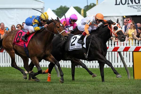 Ben's Cat (Parker's Storm Cat) and jockey Trevor McCarthy wins the Jim McKay Turf Sprint at Pimlico Racecourse 5/20/16. Trainer: King Leatherbury. Owner: The Jim Stable