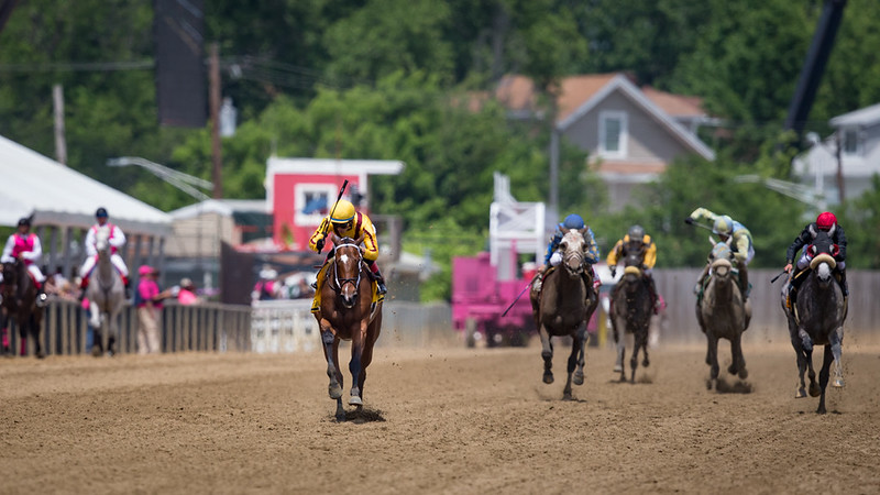 Terra Promessa (Curlin) wins The Allaire Dupont Distaff Stakes (G3) at Pimlico on 5.19.2017. Jose Ortiz up, Steve Asmussen trainer, Stonestreet Stables owner.