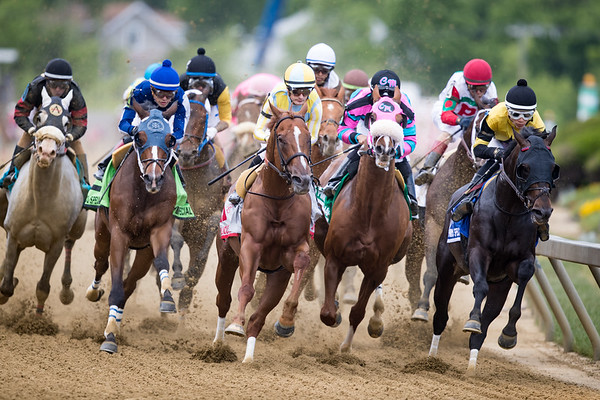 Tenfold (Curlin) wins the Pimlico Special at Pimlico on 5.17.2019. Ricardo Santana up, Steve Asmussen trainer, Winchell Thoroughbreds owner.