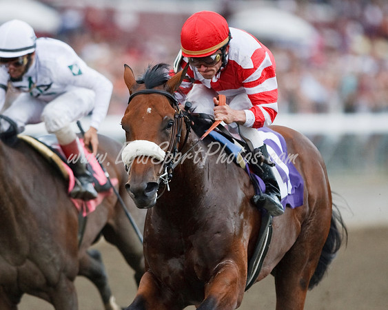 Gun Rock (Forest Danger), Ramon Dominguez up, wins a Maiden race at Saratoga 9.05.2009 (EquiSport Photos)