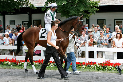 Vivacious Vivian at Saratoga
