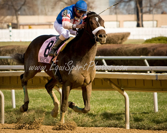 4 April 2009:  Musket Man coming down the stretch to win the Illinois Derby.