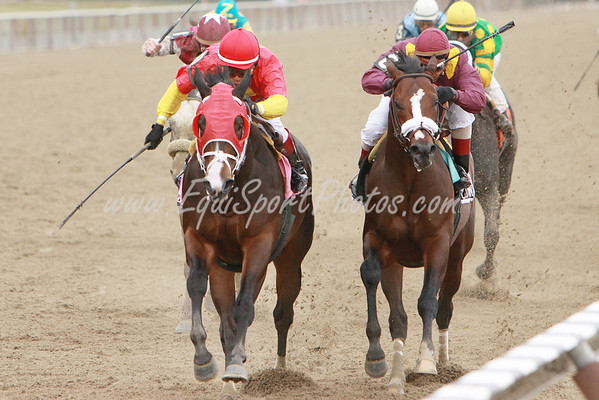AGiant Moon (Giant's Causeway), Edgar Prado up, wins the Excelsior at Aqueduct 4.4.09sk (EquiSport Photos)