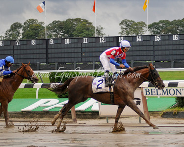 Swift Temper (Giant's Causeway), Alan Garcia up, wins the Ruffian H. at Belmont 9.13.2009db (EquiSport Photos)