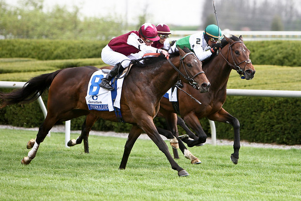 Stormalory (Storm Cat), Julien Leparoux up, wins the Transylvania S. (G3) at  Keeneland 04.03.2009jb