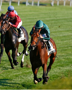 Gio Ponti, with Ramon Dominguez, wins the Woodford Reserve at Keeneland Race Course. 11.07.2007