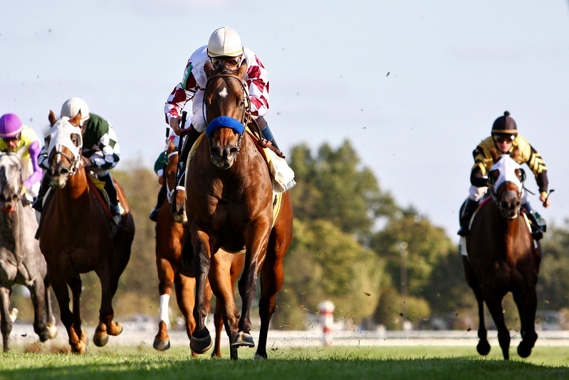 Stylish Wildcat, Garrett Gomez up, wins the Buffalo Trace Franklin County Stakes at Keeneland Race Cousre. 10.12.2007