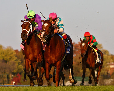 Bit of Whimsy, (pink cap) Javier Castellano up, wins the Mrs. Revere Stakes at Churchill Downs. 11.10.2007