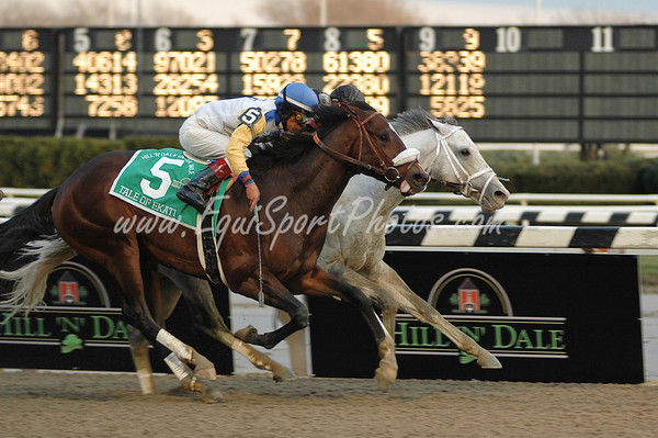 Tale of Ekati (Tale of the Cat), Edgar Prado up, wins the Cigar Mile H. (G1) at Aqueduct 11.29.2008db ( Horse Racing Photos by EquiSport Photos )