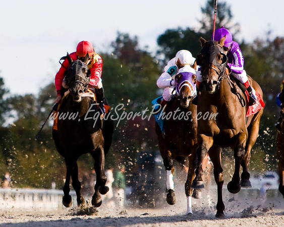 Ball Four (Grand Slam, purple cap), Julio Garcia up, wins the Fayette S. (G3) at Keeneland 10.25.2008mw ( Horse Racing Photos by EquiSport Photos )
