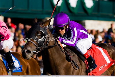 Ball Four (Grand Slam), Julio Garcia up, wins the Fayette S. (G3) at Keeneland 10.25.2008mw ( Horse Racing Photos by EquiSport Photos )