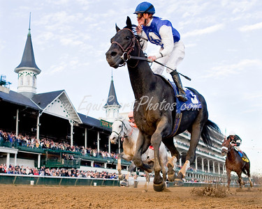 Einstein (Spend a Buck), Julien Leparoux up, wins the Clark H. (G2) at Churchill 11.28.2008mw ( Horse Racing Photos by EquiSport Photos )