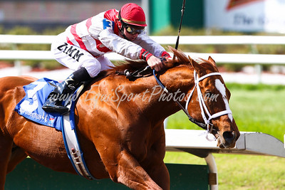 Euroears (Langfuhr), Ramsey Zimmerman up, wins the Duncan Kenner Stakes at Fair Grounds. 3.08.2008  ( Horse Racing Photos by EquiSport Photos )