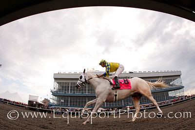 Hansen (Tapit), Victor Lebron up, wins the Ky. Cup Juvenile at Turfway 9.24.2011. Trainer: Mike Maker, Owner: Kendall Hansen