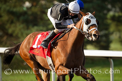 La Gran Bailadora (Afleet Alex), Corey Lanerie up, wins the Ditorted Humor Ketucky Cup Distaff (G3) Tracy Farmer owner, Michael Maker trainer.