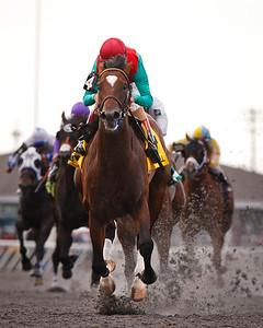 Went The Day Well (Proud Citizen), Johnny Valazquez up, wins the Vinery Racing Spiral Stakes (G3) at Turfway Park 3.24.2012.   Graham Motion Trainer, Team Valor International and Mark Ford owners.