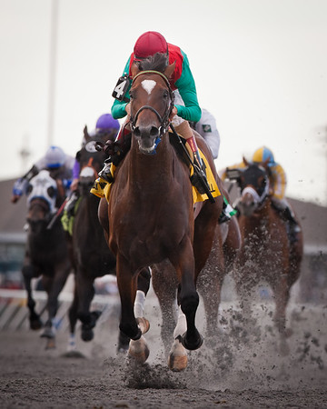 Went The Day Well (Proud Citizen), John Velazquez up, wins the Vinery Spiral Stake at Turfway. 3.24.2012 Graham Motion trainer, Team Valor & Mark Ford owners.