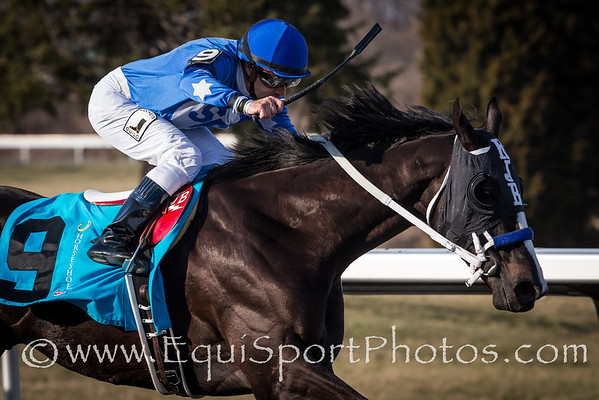 Black Onyx (Rock Hard Ten), Joe Bravo up, wins the Horseshoe Casino Spiral Stakes at Turfway Park 3.23.2013. Trainer: Kelly Breen, Owner: Sterling Racing.