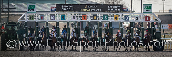 Capo Bastone, #12, stumbles at the start of the Spiral Stake at Turfway 3.23.2013.