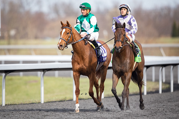 Purely a Dream (Pure Prize)  wins the Bourbonette at Turfway Park on 3.25.2017. Robby Albarado up, Ken McPeek trainer, Living the Dream Racing owners.