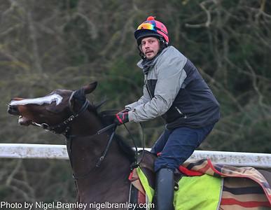 Epsom Downs Race Horses in Training