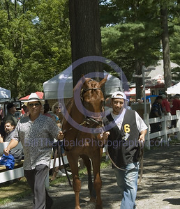 The walk to the paddock at Saratoga.  A rarity these days the horses are led through the crowds at Saratoga.