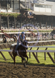 Coming around the Clubhouse turn at Saratoga.  Their is a flurry of activity early in the morning as horses get their exercise in the just after sun rise.