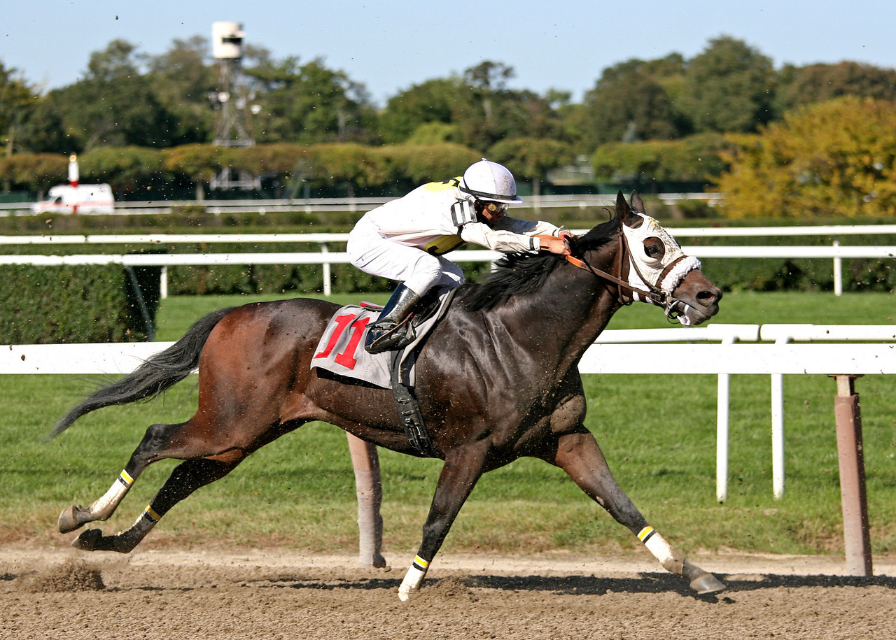 4th Race - Gift of Valor heads down the stretch
