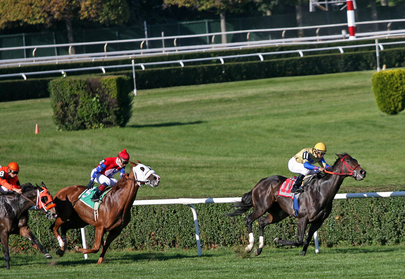 6th Race - Annconda leads Ambling Rose down the stretch