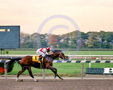 Riboletta enroute to winnig the 2000 Beldame Stakes at Belmont Park.  Also in the races was Beautiful Pleasure.  The final time of the race was 1:46