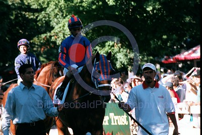 Left Bank in the Saratoga Paddock