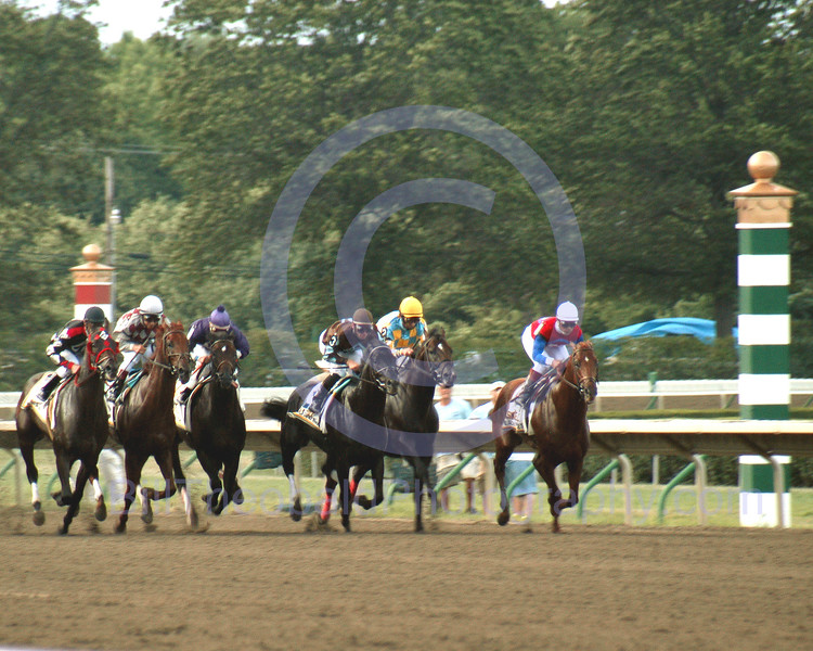 And They're Off!  The field of horses break from the gate in the 2003 Haskell Invitational at Monmouth Park.  The race was won by Peace Rules, and in winning he defeated Funny Cide, Sky Mesa and Unforgetable Max.