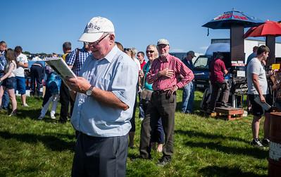 Dingle Races 2012