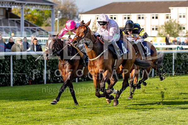 Doncaster Races - Sat 04 May 2019