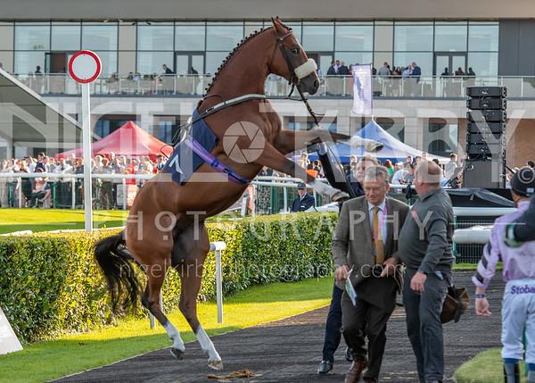 Doncaster Races - Sat 20 July 2019