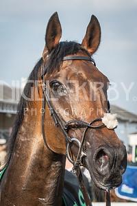 Race 4 - Auxerre - DSC_0197
