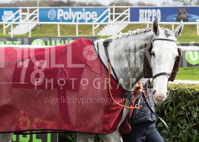 Race 1 - Queen Penn - DSC_0431