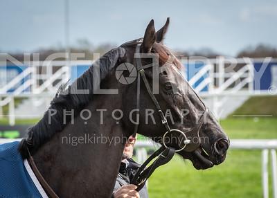 Race 1 - Highland Reel - DSC_0455