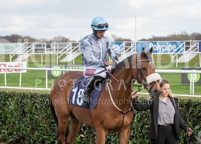 Race 7 - Attain - Miss Brodie Hampson - DSC_0715