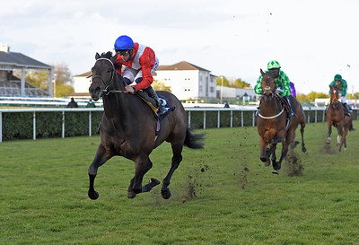 TWILIGHT CALLS with David probert wins Follow St The races On Twitter Novice Stakes at Doncaster 1-5-21.