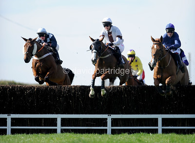The Strutt & Parker Wilton Point-to-Point Races, MILBORNE ST ANDREW, DORSET, ENGLAND