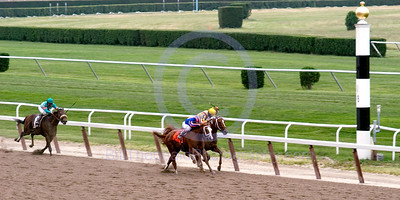 Rags to Riches battles with Curlin down the long Belmont Stretch during the 139th renewal of The Belmont Stakes.  In the end Rags to Riches prevailed over Preakness winner Curlin.  Rags to Riches is a Filly and 1/2 brother to Jazil winner of the 2006 Belmont Stakes.